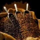 кофе полезен для зубов