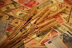 Плюсы и минусы экологического сельского хозяйства для потребителя