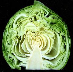 Диета на белокочанной капусте