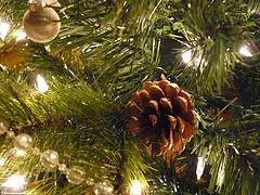 живая елка на Новый год опасна для здоровья
