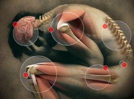 Фитотерапия в лечении болезни Паркинсона