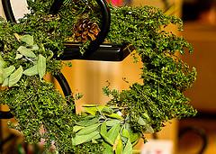 Прием травяных настоев не всегда приносит пользу, или осторожно – фитотерапия!