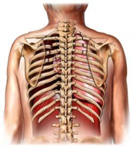 Перелом ребра. Симптомы