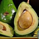 А знаете ли вы, что главное, чем полезен авокадо для организма, - это его жир?