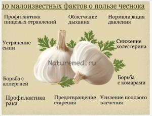 10 малоизвестных полезных свойств чеснока для организма