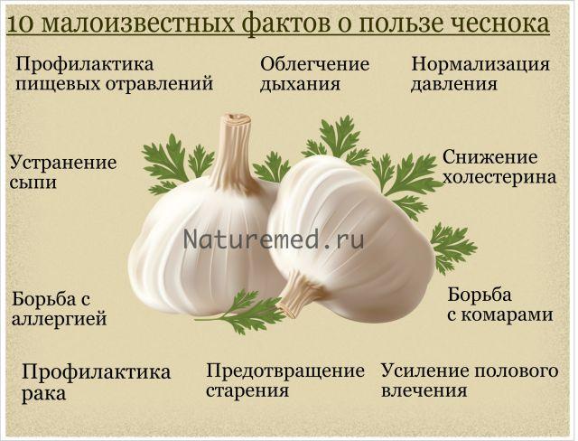 10 фактов о пользе чеснока