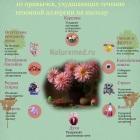 10 привычек, которые мешают выполнять лечение поллиноза