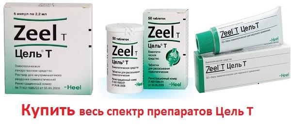 Купить zeel T