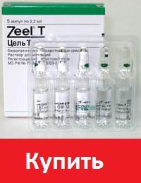 Цель Т (Zeel T)