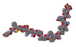 молекула бета-эндорфина