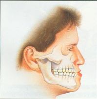 В старении виноват сдвиг челюсти