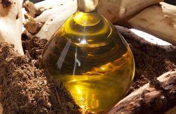 Применение эфирного масла сандала в медицине