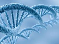 Значение метода полимеразной цепной реакции для диагностики инфекционных заболеваний