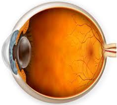 Пресбиопия обоих глаз