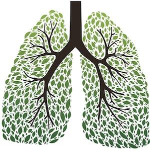Очищение легких курильщика