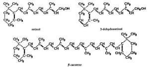 Витамин А. Химическое строение и роль в организме