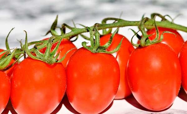 помидорки